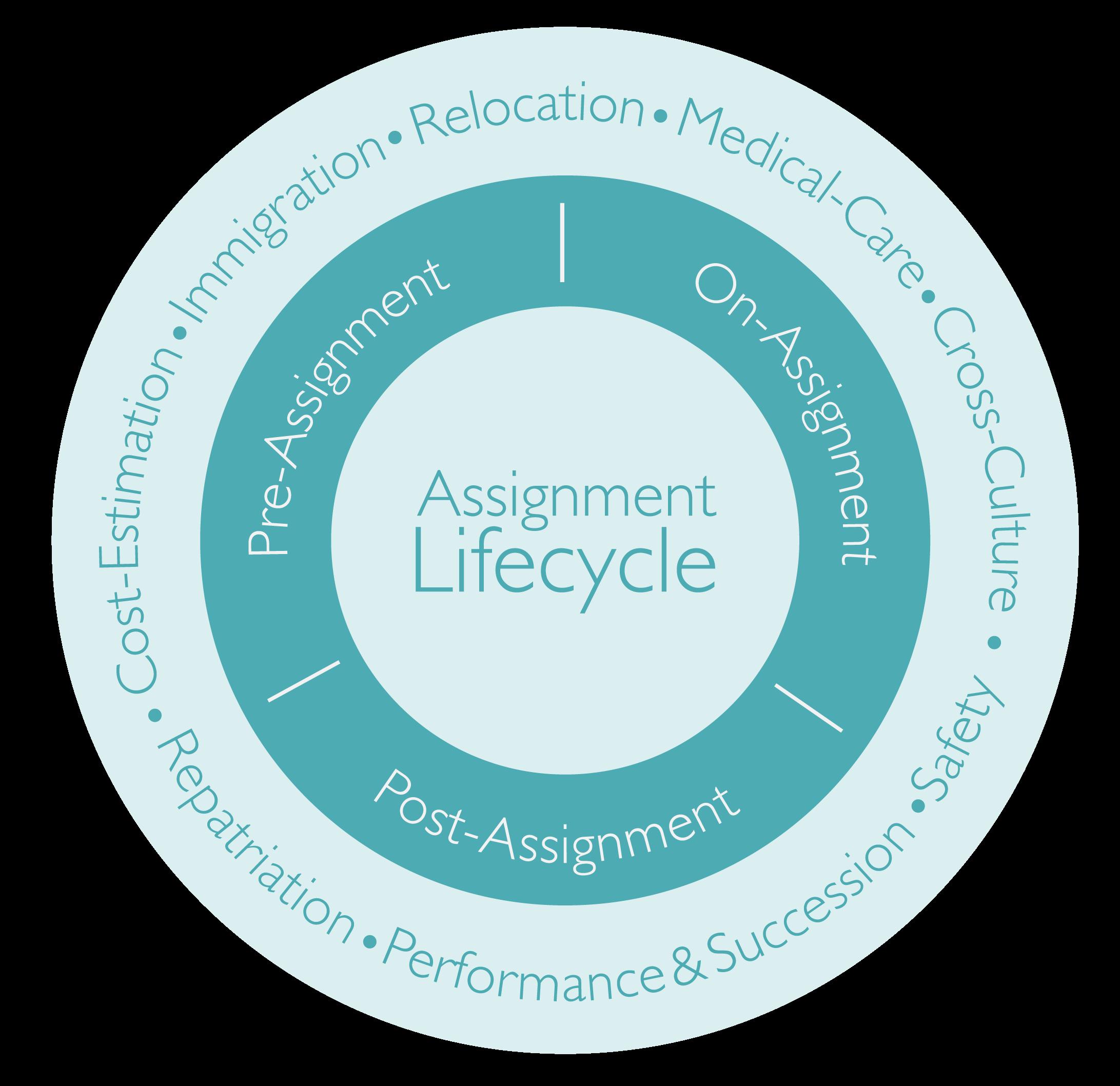 Die verschiedenen Phasen eines Assignment Lifecycles: Welche Phasen des Auslandseinsatzes und welche Services sind relevant?